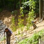 Stabilisation cours d'eau du Village, Saint-Joseph-du-Lac